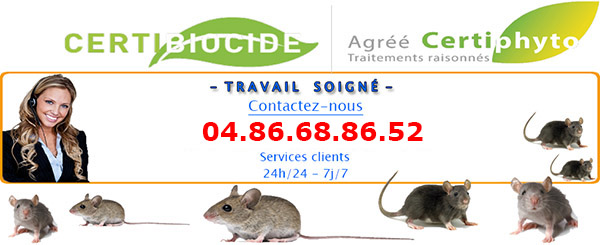 Deratisation Tourrettes 83440